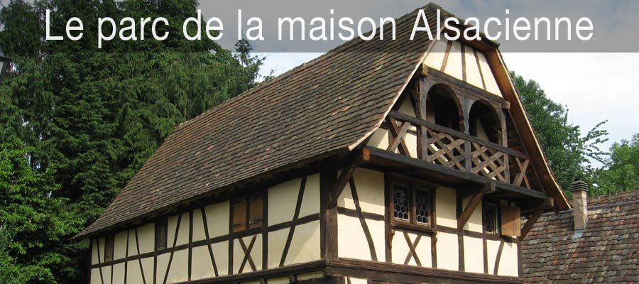 Restauration de maison alsacienne