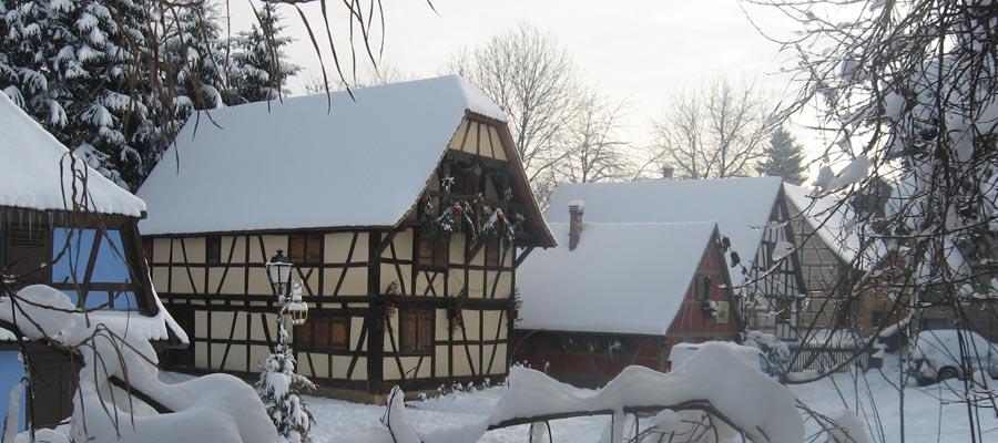 Le parc sous la neige...
